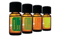 Where to Buy Pure and Natural Essential Oils