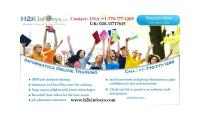 Informatica Online Training and Placement Assistance